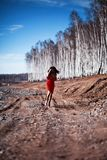 Woman in red dress in forest Stock Photography