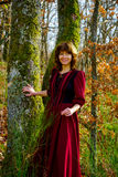 Woman in red dress portrait, autumnal forest Stock Photo