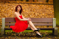 Woman red dress sitting on bench in autumn park Royalty Free Stock Photos