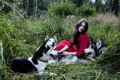 Woman in red dress with tree wolfs in forest Stock Photography
