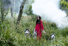 Woman in red dress with tree wolfs, forest, husky dogs mystery portrait Royalty Free Stock Photos