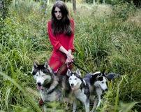 Woman in red dress with tree wolfs, forest, husky dogs mystery portrait Stock Photos