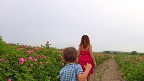 Woman in red dress walks in the blossoming rose garden stock footage