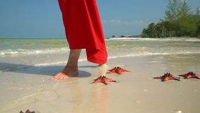 Tropical white sand with red starfish in clear water. Starfish on phu quoc Island. The woman in a red dress walks on the stock footage