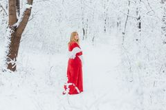 Woman in red dress. Posing in the winter in cold forest Royalty Free Stock Photography