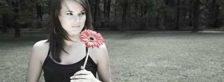 Woman With Red Flower. Lots Of Copy Space Royalty Free Stock Photos