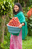Woman with red fruit Royalty Free Stock Photography