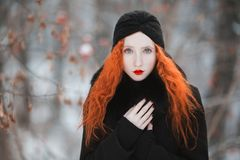 Beautiful attractive girl with red hair Royalty Free Stock Photos