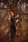 Woman red-haired model girl black dress autumn Royalty Free Stock Image
