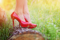 Woman in red heels. Unrecognizable young woman wearing red heels standing on a log Stock Images