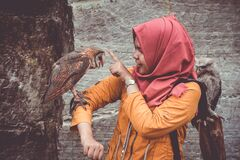 Woman in Red Hijab and Orange Coat Touching Brown and White Owl stock photos