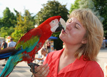 Woman with red macaw. Woman holds in the palm of a parrot and kisses Royalty Free Stock Photography