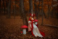 Woman in red medieval dress stock images