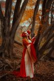 Woman in red medieval dress. A young woman in red medieval dress walking in wonderland stock photo