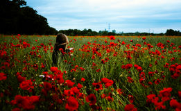 Woman in red poppy field Stock Photography