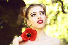 Woman with red poppy seed stock images