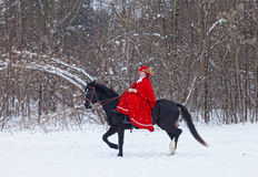 Woman in red riding habit. Sits astride the Oryol trotter Royalty Free Stock Photography