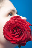 Woman with red rose. A red rose in bloom by the face of a young woman Stock Photography
