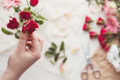 Woman with red rose Stock Photos