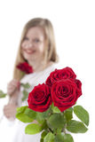 Woman with red roses. GN. Young woman standing with a rose in her hand and a bouquet with roses in the foreground. GN stock image