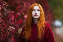 Woman with red straight hair in a red coat on a bright autumn background Stock Photography
