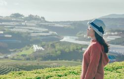 Woman in Red Sweater With Gray Hat Beside Green Field Royalty Free Stock Photos