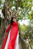 Woman in Red and White Dress Leaning at Tall Tree royalty free stock photo