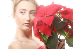 Woman with red xmas flowers Royalty Free Stock Photography