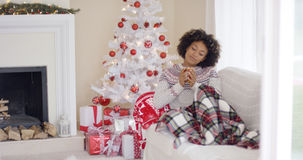 Woman relaxing during the Christmas holiday season. Young woman relaxing during the Christmas holiday season sitting under a rug on a sofa in front of the stock photos