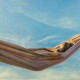 Woman relaxing in a hammock Royalty Free Stock Image