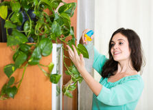 Woman removes dust in the room Stock Photos