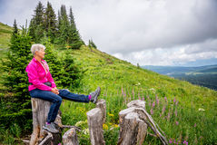 Woman Resting on a Tree Stump during a Hike Stock Images