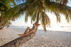Woman rests at the palm tree near ocean at sunset Stock Image