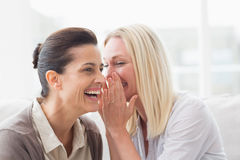 Woman revealing secret to her friend smiling Stock Images