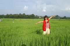 Woman in rice field Royalty Free Stock Image