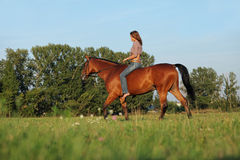 Woman ride bareback horse in a evening field Royalty Free Stock Photo