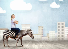 Woman ride zebra stock images