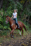 Woman rider practicing dressage. Equestrian sport, dressage - woman and bay horse Royalty Free Stock Photos
