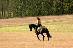 Woman rides on horseback. Stock Photos