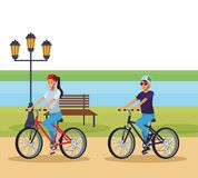 Woman riding bicicle. At park vector illustration graphic design royalty free illustration