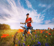 Woman riding a bicycle on a blooming poppy meadow Royalty Free Stock Photos