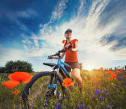 Woman riding a bicycle on a blooming poppy meadow Royalty Free Stock Images