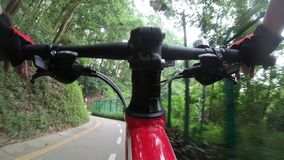 Riding bike on bicycle path in park. Woman riding bike on bicycle path in park stock video