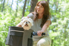 Woman riding a bike with her dog Stock Photo