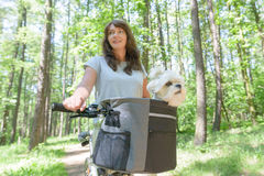 Woman riding a bike with her dog Royalty Free Stock Image