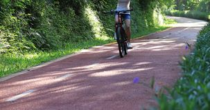Woman riding a bike on sunny park trail with arms outstretched stock footage
