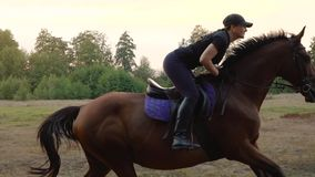Woman riding horse by gallop through a meadow at sunset. Horseback riding in slow motion.