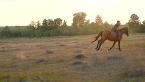 Woman riding horse by gallop at sunset. Horseback riding in slow motion.