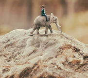 Woman riding an elephant Stock Images