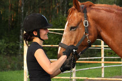 Woman in riding helmet and brown horse Stock Photos